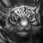 DaRandomGuyFromRBLX's avatar