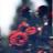 Zordxn's avatar