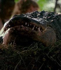 Alligator-dr-dolittle-2-87.2.jpg