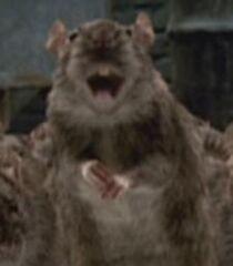 Dad-rat-garfield-the-movie-0.17.jpg