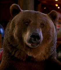 Archie-the-bear-dr-dolittle-2-6.09.jpg
