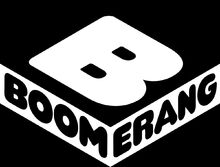 Boomerang Channel Logo.jpg