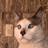 YT Itz Cloudz's avatar