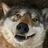 CowardlyWolf's avatar