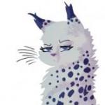 Rainytale's avatar