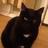LunaSparklli's avatar