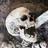 LOLSKELETONS's avatar