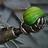 BigMek13's avatar
