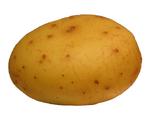 The Potatofoogle