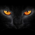 Джулия Моноямо's avatar