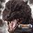 Darrell Yoder Gfan's avatar
