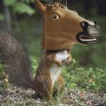 Мыш11's avatar