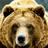 Kickratgames1101's avatar