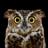 Cantomic66's avatar