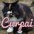 CurpaiLikesPie's avatar