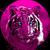 Pinktiger2107
