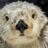 OtterWater77's avatar