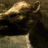 Redforce059's avatar