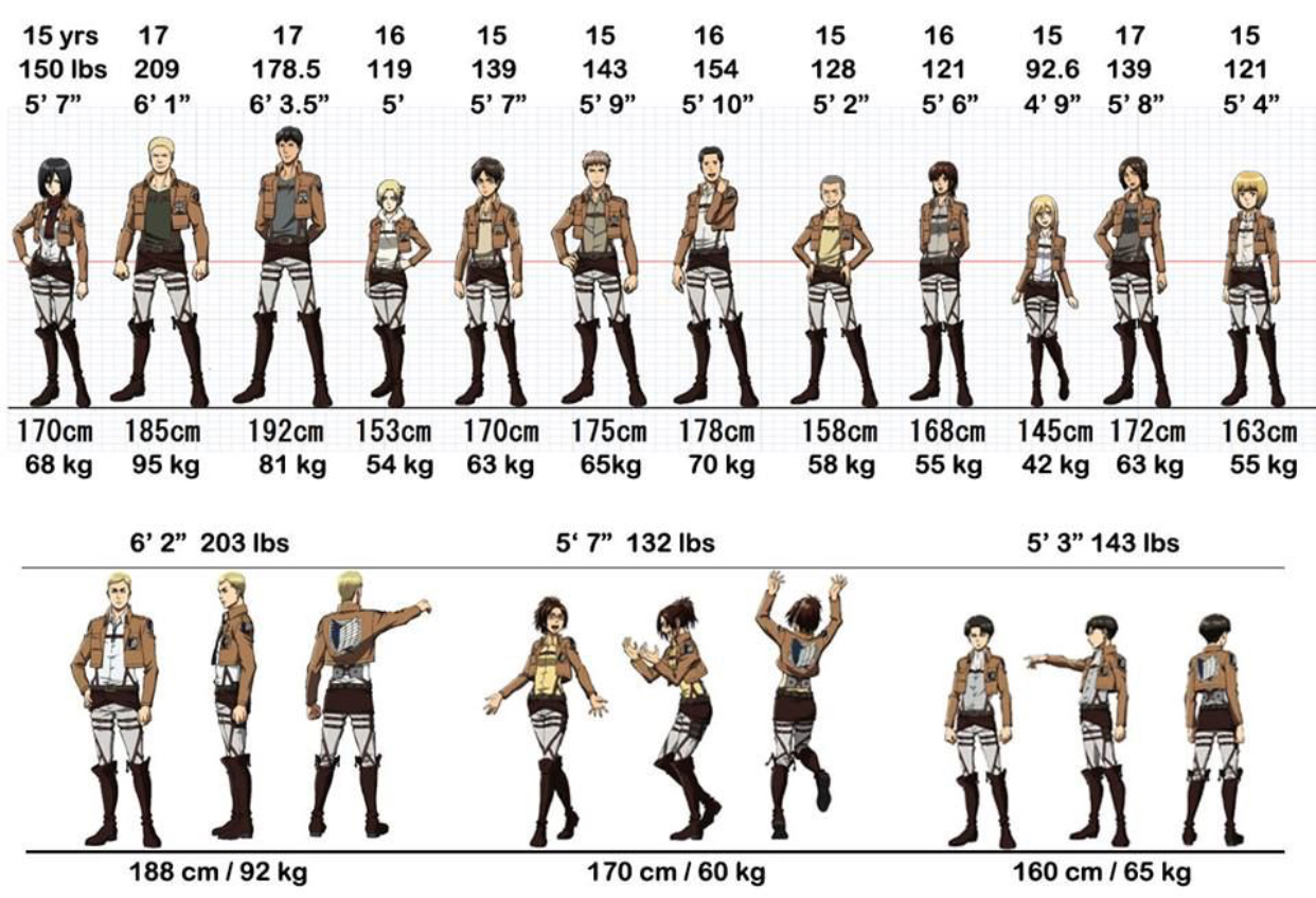 Height and weight for all attack on Titan character