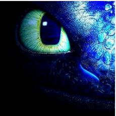 Daynightfury's avatar