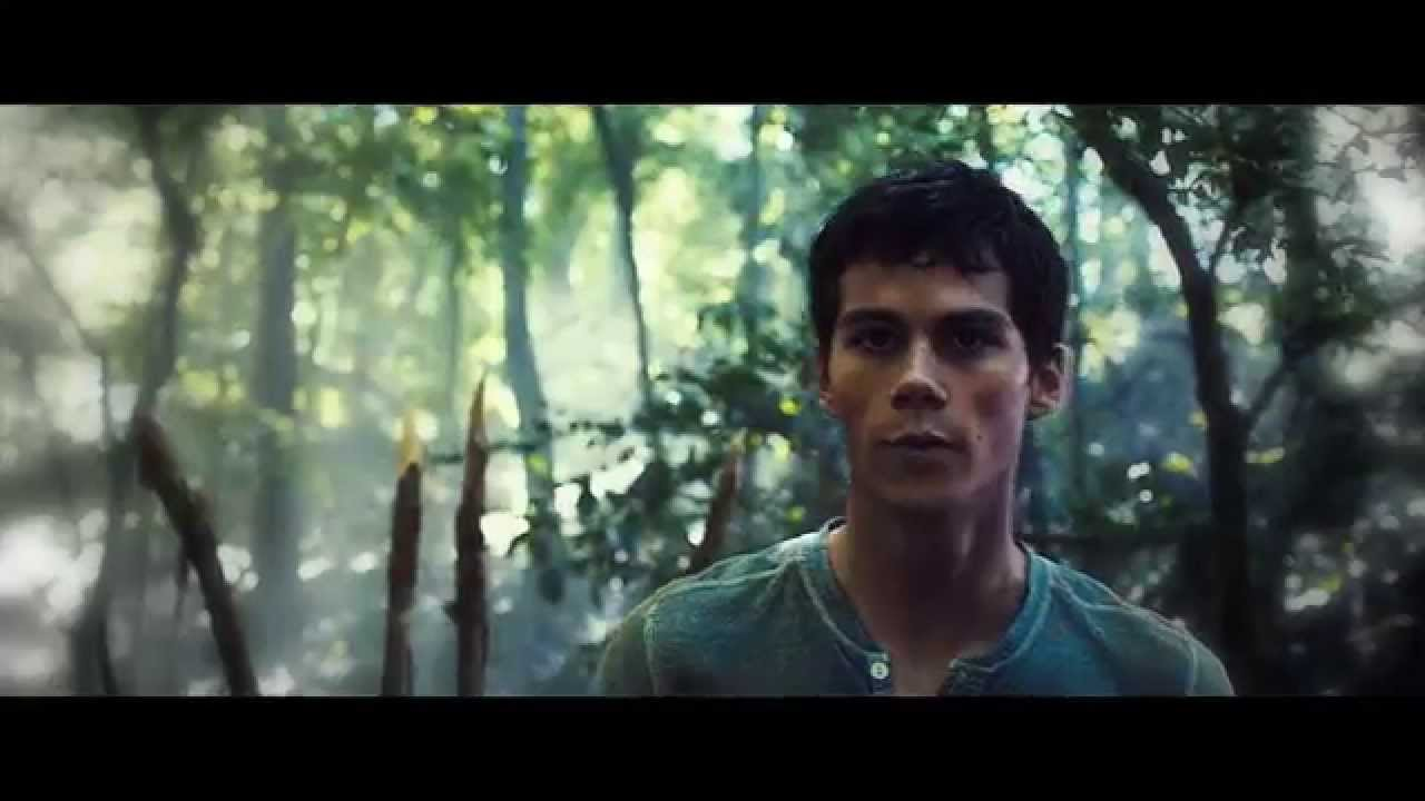 The Maze Runner on crack #2
