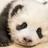 LifeIsMeh's avatar