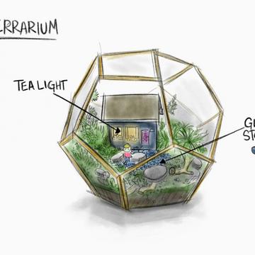 Jo's Terrarium