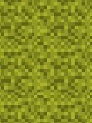 Mountain Grass.jpg