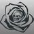 LimeySkull
