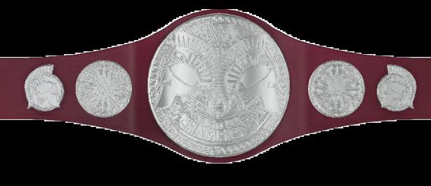 RAW Tag Team Championship.png