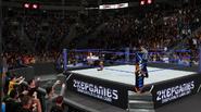 Sheamus-Reigns (SDLive Ep.5) (1)