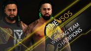 Tag Team Championship (The Usos) (1)