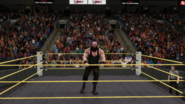 KOTRSemiFinal (Reigns-Strowman) (18) - King of the Ring (2017)