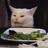 LaserBean203's avatar
