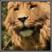 Harry granger's avatar