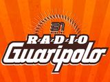 Radio Guaripolo