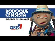 Censo 2017 - Bodoque censista - Capsulas adicionales