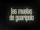 Las muelas de Guaripolo