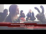 Entrevista a Huachimingo 31 Minutos Gira Mundial