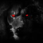 Kry-241's avatar