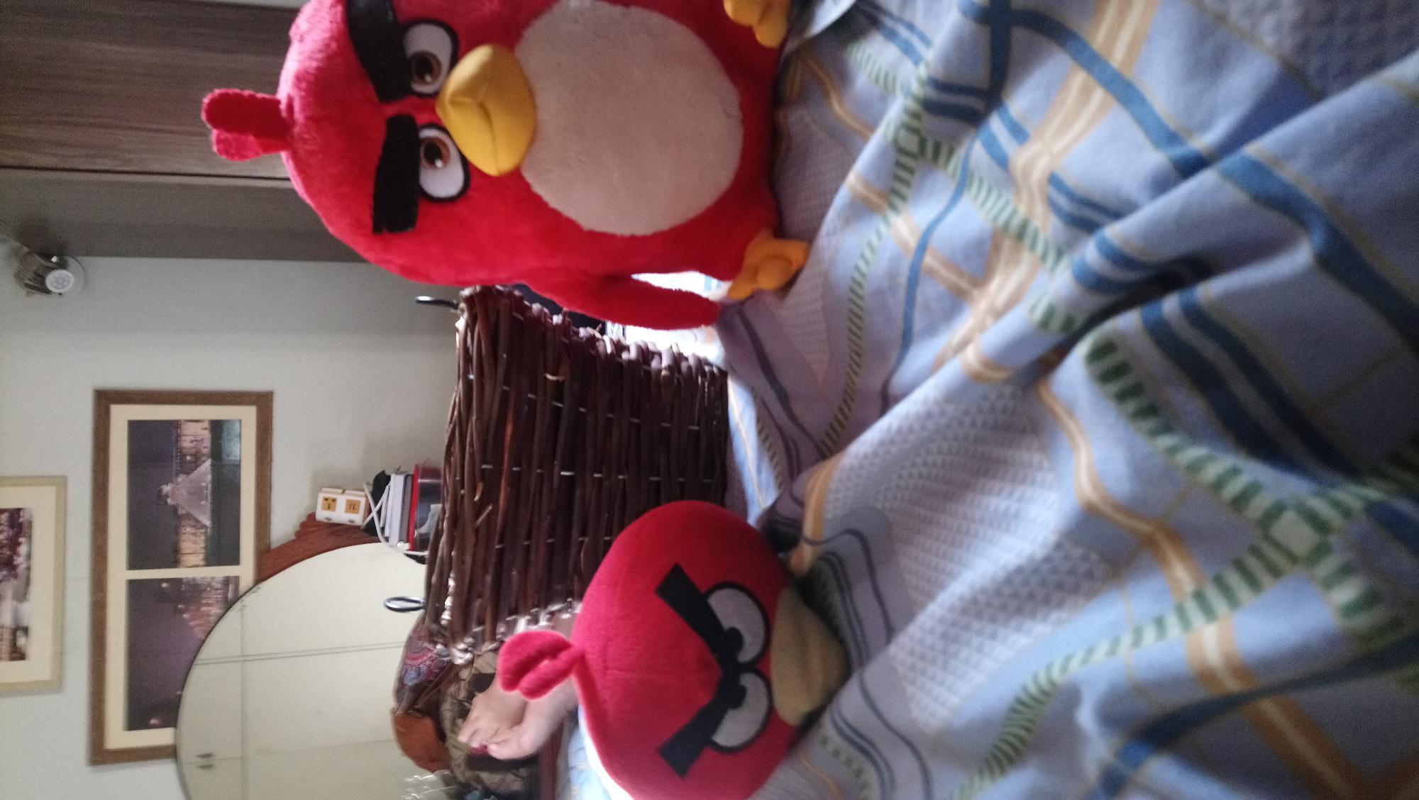 Miren a mis Angry Birds y su nuevo nido