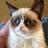 Pvzarif's avatar