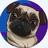 Hahaimfunny30548's avatar