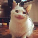 Лалкомен's avatar