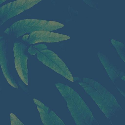 Aztr01's avatar