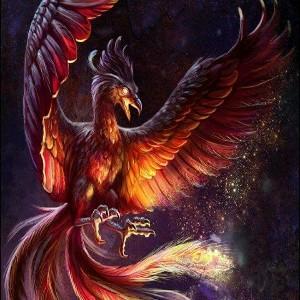 PhoenixFlame19's avatar