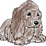 Lovbunnydogs's avatar