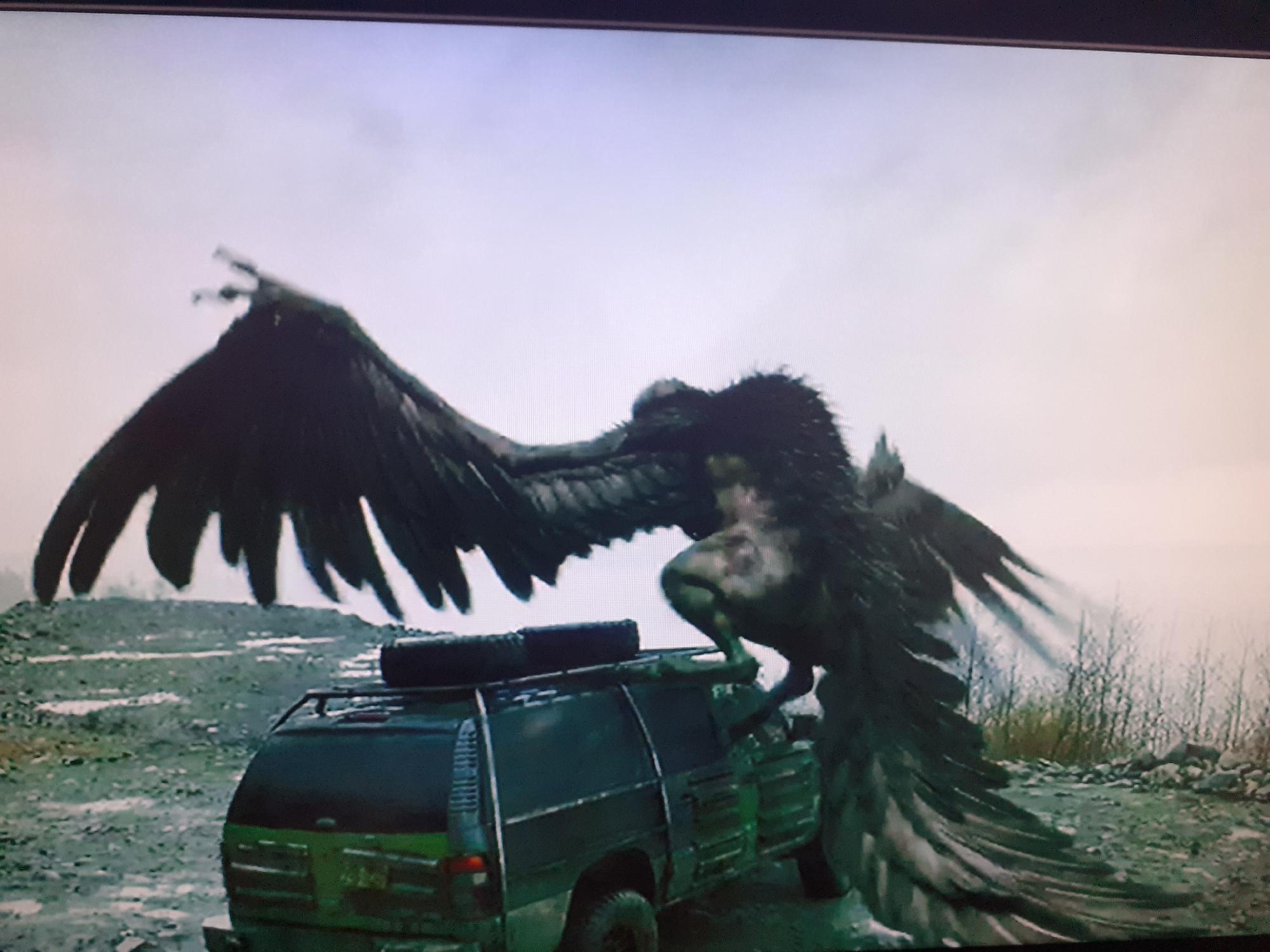 Quien se recuerda de Mushi , el pavo gigante