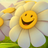Daisii's avatar