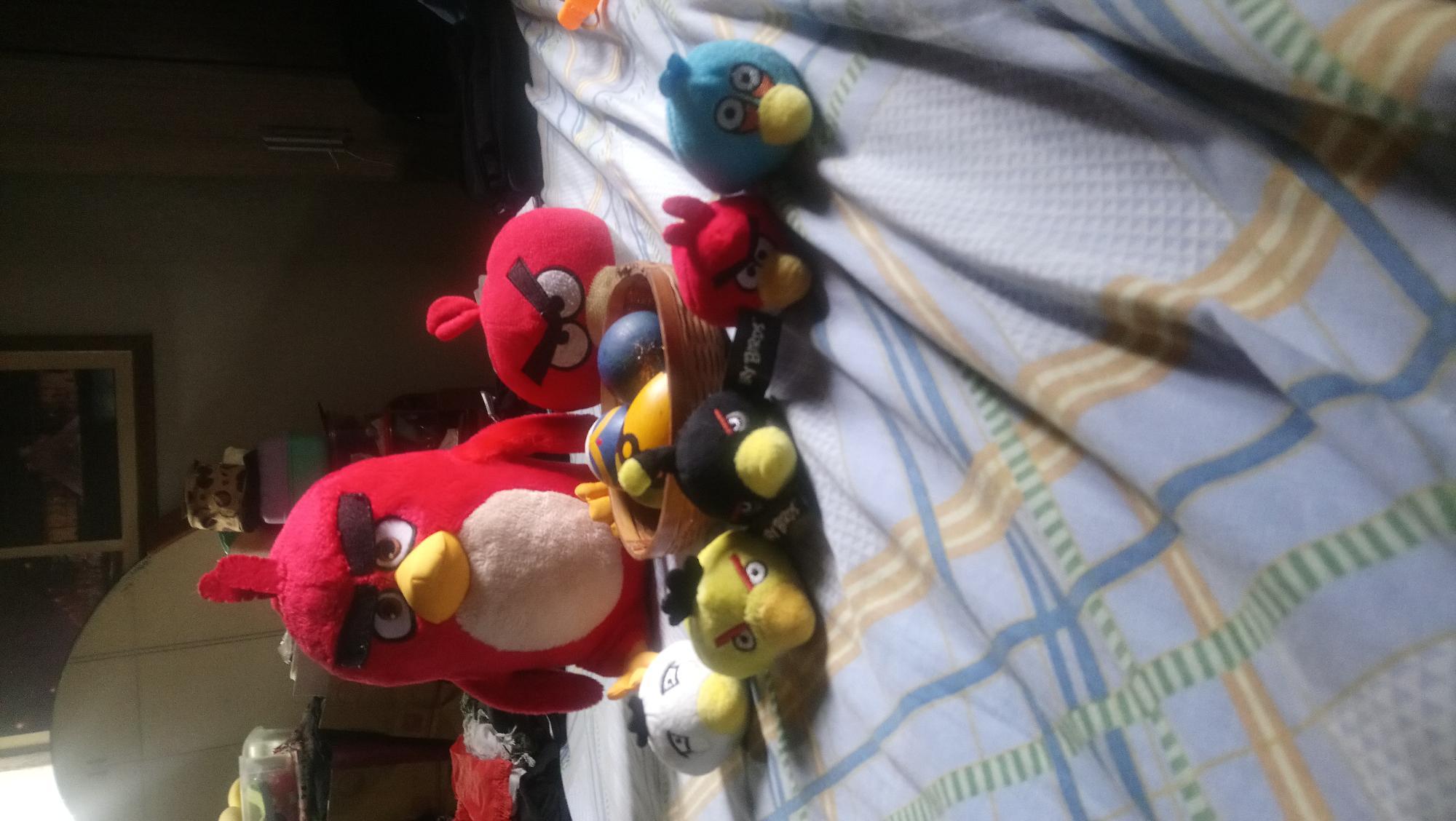 Miren a mis Angry Birds nuevos y viejos